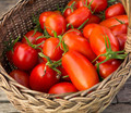 Organic Gardening: 7 Things You Can Recycle to Use in Your Garden