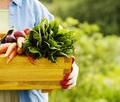 Organic Gardening Tip To Make Your Gardening Easier
